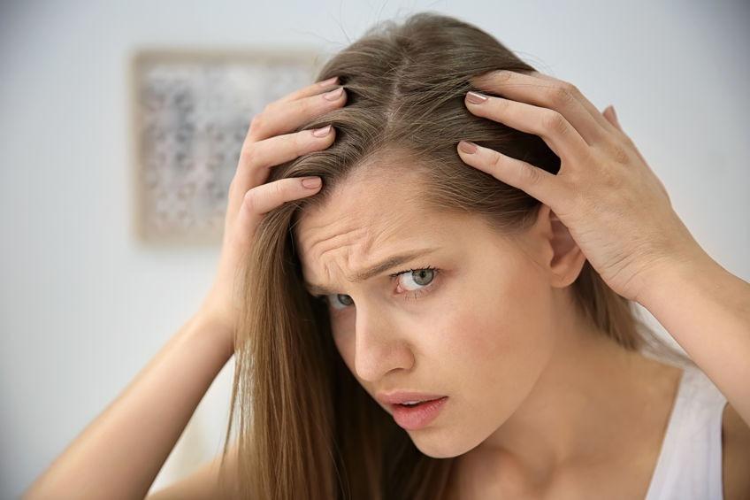 Tratamiento contra las picaduras de pulga y prevención
