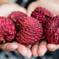 Los beneficios del litchi o uva china