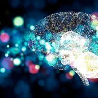 Cómo fortalecer la memoria
