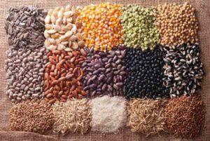 Propiedades de las semillas de mijo