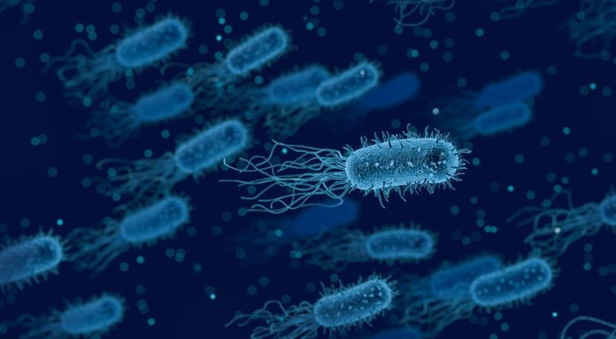 Fobia a las bacterias