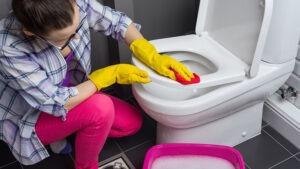Cómo limpiar el WC