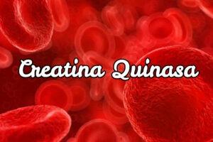 Ansiedad y creatina quinasa alta