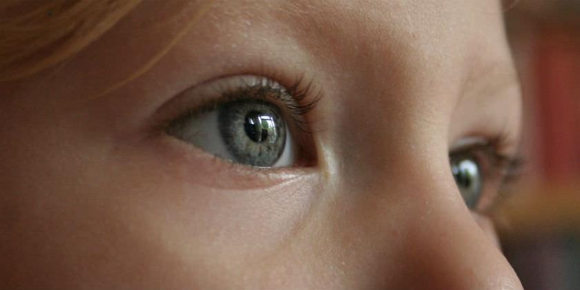 Alimentos que favorecen la salud de los ojos