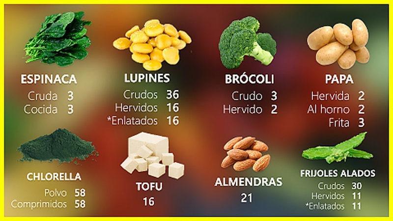 5 alimentos ricos en proteína vegetal
